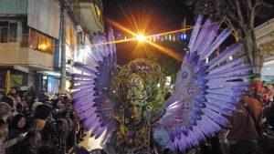 Parade kostum